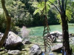 Abel Tasman National Park.