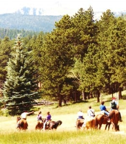 Riding horses in Upper Beaver Meadow