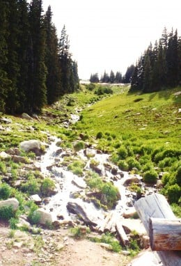 Stream of water in the Rocky Mountains