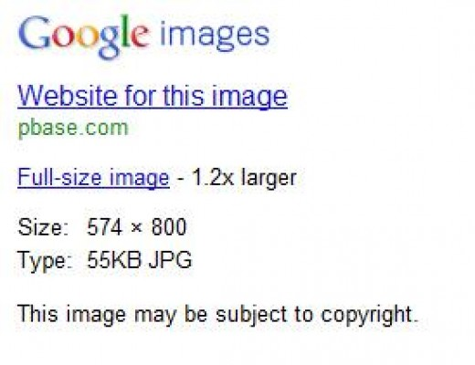 Most images in Google Image Search will contain this warning: Image may be subject to copyright.