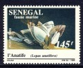 Goose Barnacle on Postage Stamp