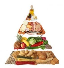 Food Pyramid. Image:  Elena Schweitzer - Fotolia.com