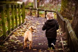 Dogs and Children: How to Make Sure Your Kids and Dog Get Along