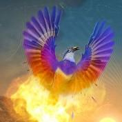 Poohgranma profile image