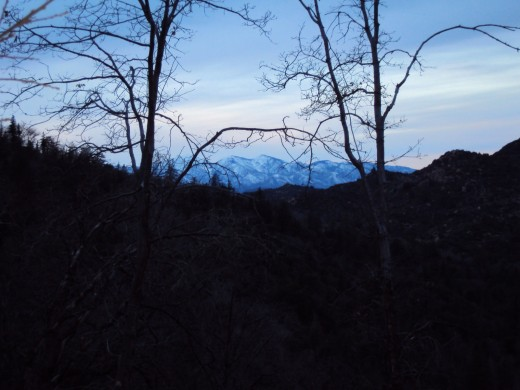 Glancing towards Mount Baldy as I am on a morning walk.