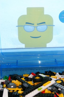 The Lego Project Case
