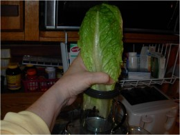 Step 3 - Juice the Romaine lettuce first in your Juicer