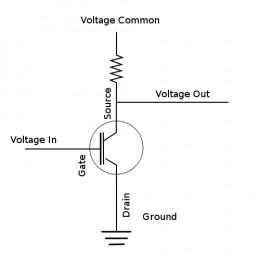 Organic Field Effect Transistor