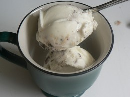 Frozen yogurt was introduced in New England in the 1970s as a soft serve dessert by H. P. Hood under the name Frogurt. source Wikipedia - Health Benefits of Yogurt