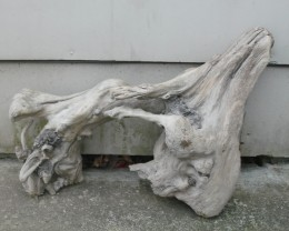 Woodcarving driftwood