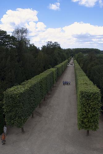 The Vastness of Versailles