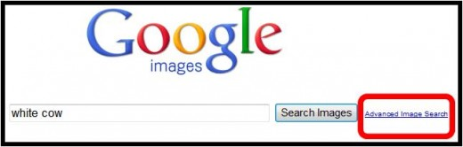Step 2 - Before searching for your image, click ADVANCED IMAGE SEARCH