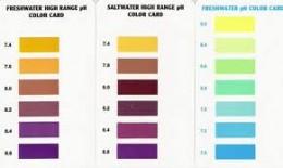 Aquarium pH graphs look like this...