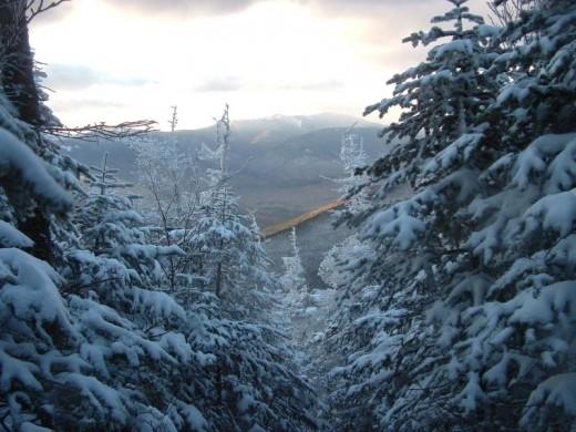 Mt Lafayette thru the trees