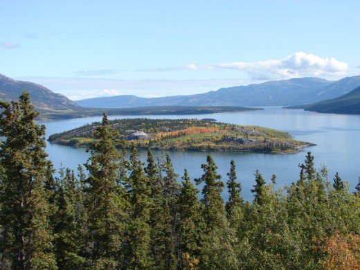 Bove Island in Tagish Lake south of Carcross.
