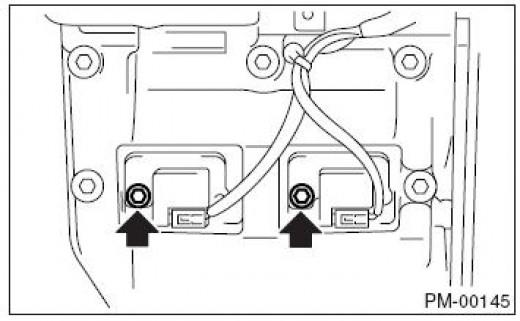 Remove the bolt to access plug