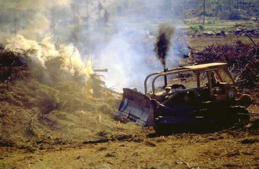 Things change when you give a Seabee a bulldozer