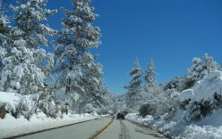 Snow Daze in Southern California
