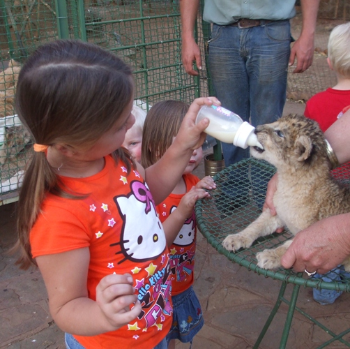 Danay Cilliers feeding the cub