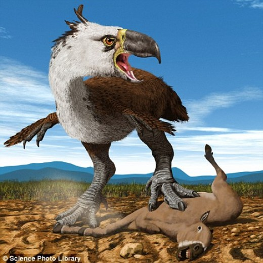 Terror Bird Feeding on Medium-sized Mammal