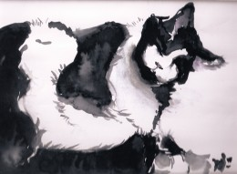 This picture of my fluffy girl Penelope was done very simply in watercolor, a simple painting, which shows the power of black and white.
