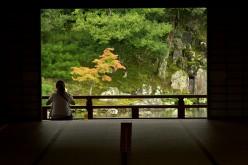 Overworked? Try Zen Gardening