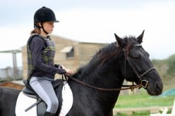 Safety gear for equestrians.