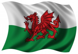 The Red Dragon - the Welsh flag... left out , poor Cambrians