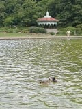 Cincinnati's Eden Park:  186 Acres of Art, Theater and Nature