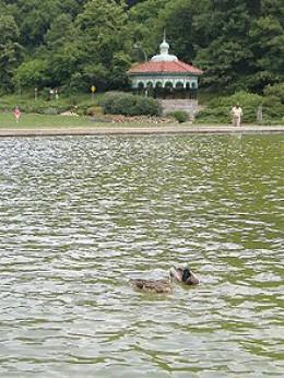 Gazebo at Mirror Lake in Eden Park