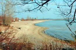 Beach Ward's Island Toronto Islands