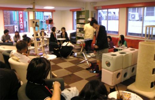 Calico Cat Cafe, Tokyo