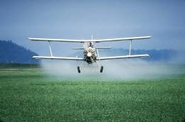 pesticides beware..??