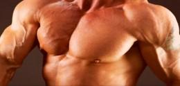 Mr. Big Muscles: I love it!