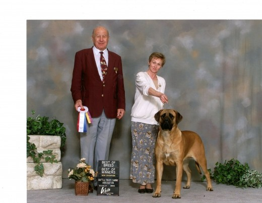 Dick's mean sister, Alice (superb isn't she?) with her handler at a show.