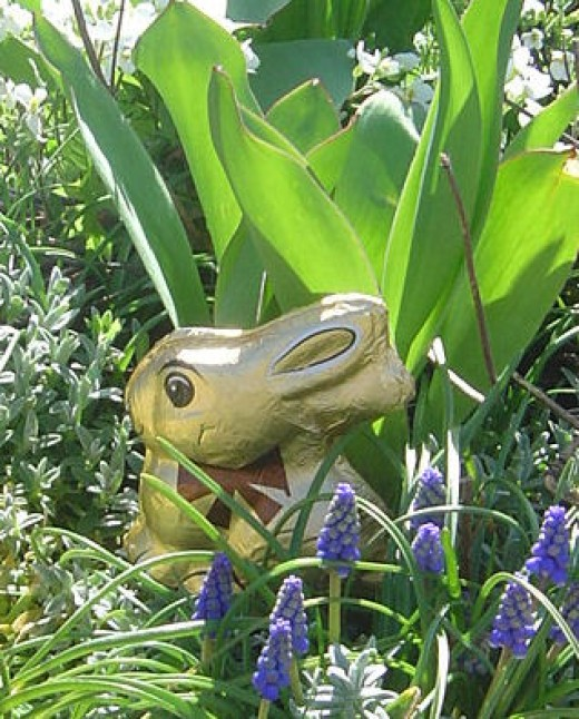 Easter bunny hidden in the gardens. This picture features on one of our Easter cards. You could hide cards in your Easter Egg Hunt.