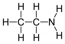 The main hydrocarbon chain is 2 carbons long, and the amine group is on the terminating carbon (however there is no need to mention numbers due to the length of the main hydrocarbon chain): ethylamine