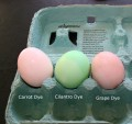 Natural Easter Egg Dyes: How to Make Natural Dyes