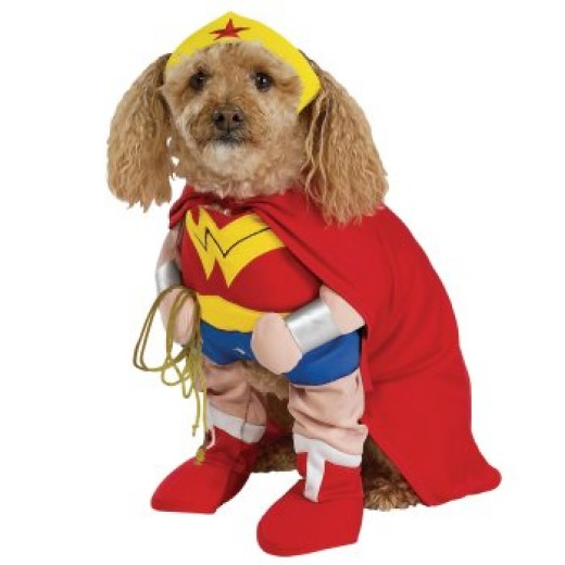 Small Dog Superhero Costume for 2014
