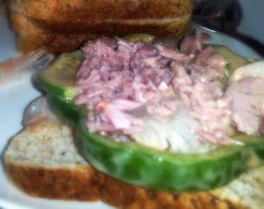 Tuna Vegetables Salad Sandwich
