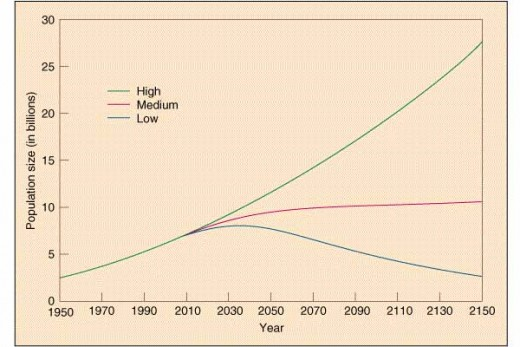 This figure shows projected world population according to three different fertility scenarios. UN projections of the future world population, using different total fertility rates. (1)