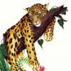 tatmania profile image