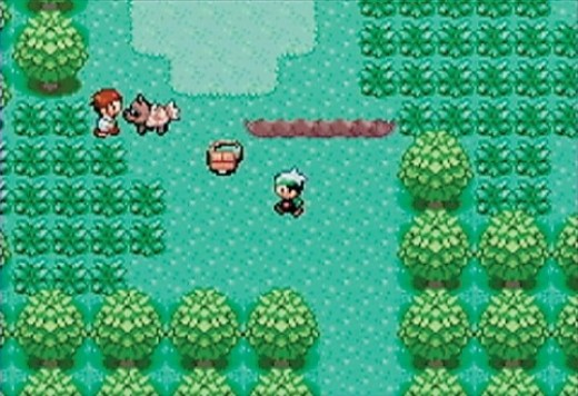 This is a screenshot from Pokmon Emerald. This is the prelude to the first battle of the game.