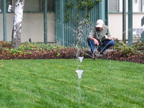 A water auditor conducts a distribution uniformity test. Water is collected and measured in each of 15+ cups to make sure sprinklers are spraying uniformly.