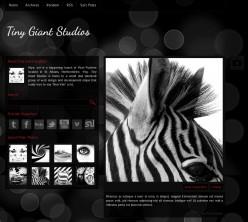 76 Premium Tumblr Themes