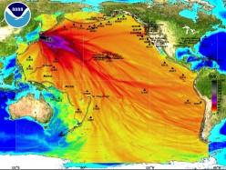 Nuclear Power Plants near Fault Lines and Earthquakes
