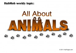 HubMob Weekly Topic: All about animals.