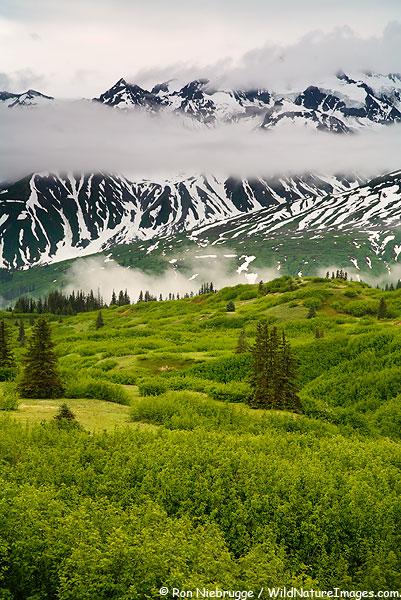 Tatshenshini-Alsek Wilderness Provincial Park, British Columbia Canada