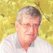 handyman22 profile image