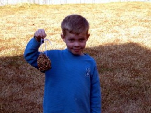Homemade pine cone bird feeder